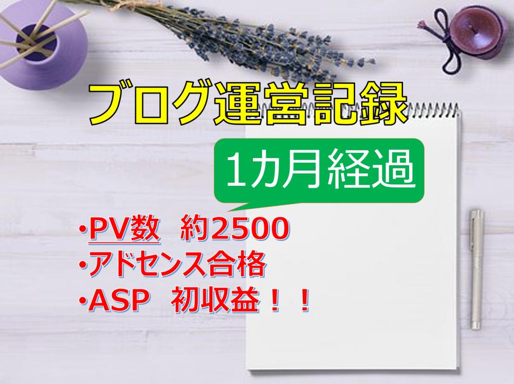 ブログ開設1カ月の運営記録(PV・収益)~アドセンス合格・ASP初収益!!
